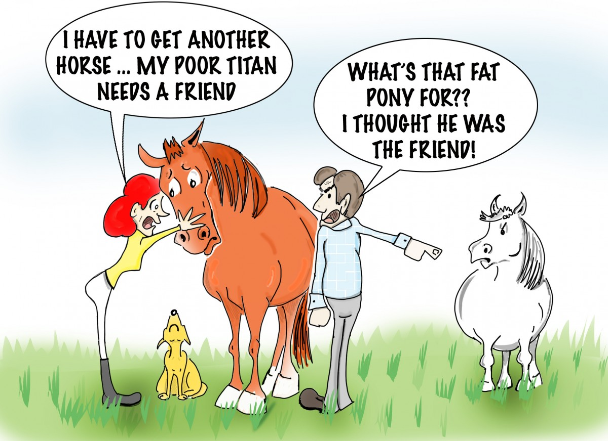 Funny Horse Cartoons Related Keywords & Suggestions - Funny Horse ... Funny Adults Cartoon Image